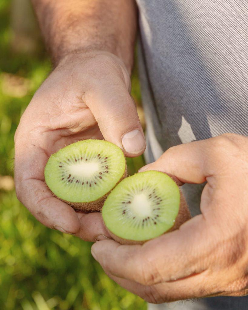 Qui est vraiment le kiwi ?